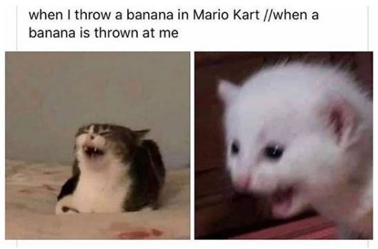 Cat - when I throw a banana in Mario Kart //when a banana is thrown at me