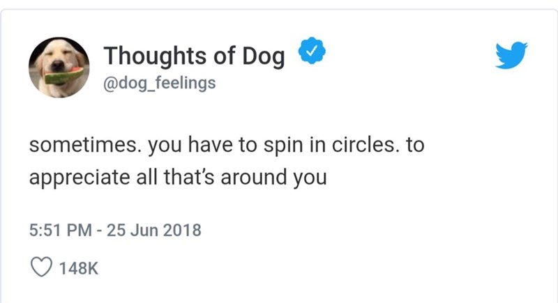 Text - Thoughts of Dog @dog_feelings sometimes. you have to spin in circles. to appreciate all that's around you 5:51 PM - 25 Jun 2018 148K