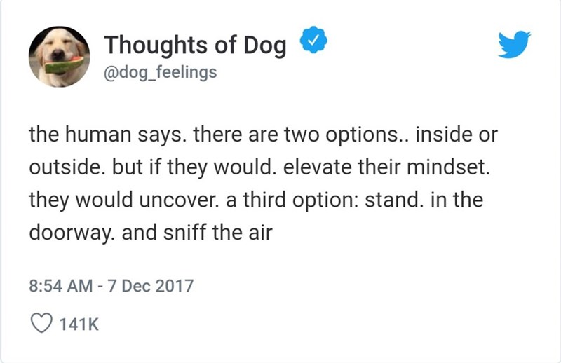 Text - Thoughts of Dog @dog_feelings the human says. there are two options.. inside or outside. but if they would. elevate their mindset they would uncover. a third option: stand. in the doorway. and sniff the air 8:54 AM - 7 Dec 2017 141K