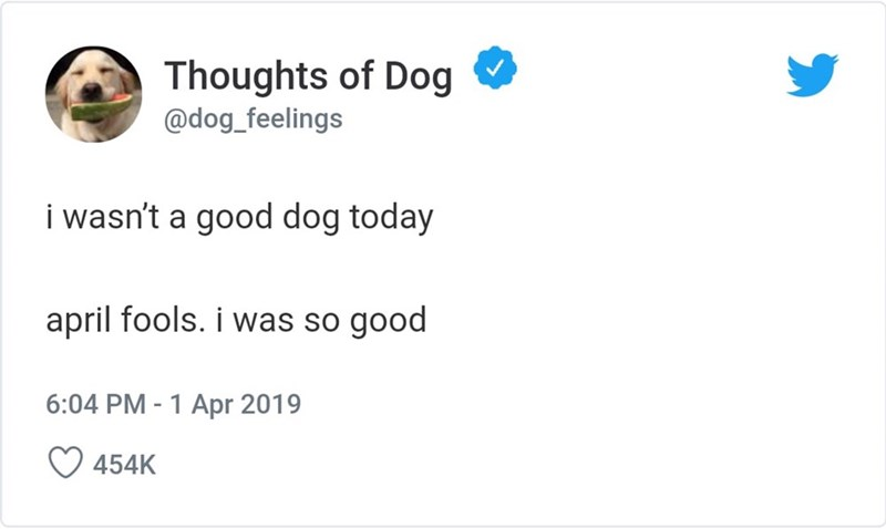 Text - Thoughts of Dog @dog_feelings i wasn't a good dog today april fools. i was so good 6:04 PM 1 Apr 2019 454K