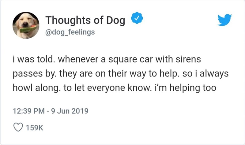 Text - Thoughts of Dog @dog_feelings i was told. whenever a square car with sirens passes by. they are on their way to help. so i always howl along. to let everyone know. i'm helping to0 12:39 PM -9 Jun 2019 159K