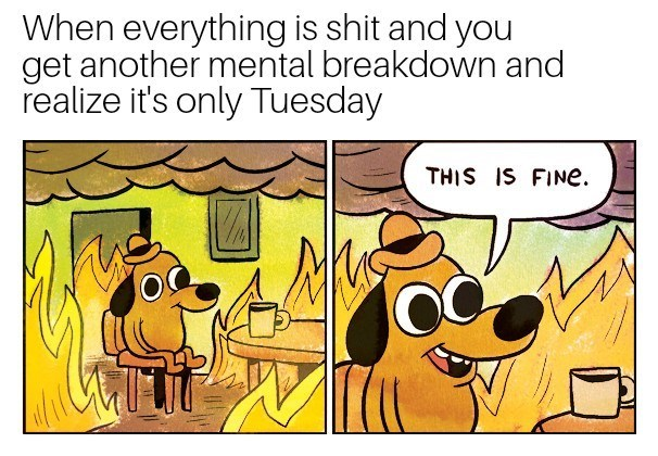 Cartoon - When everything is shit and you get another mental breakdown and realize it's only Tuesday THIS IS FINe