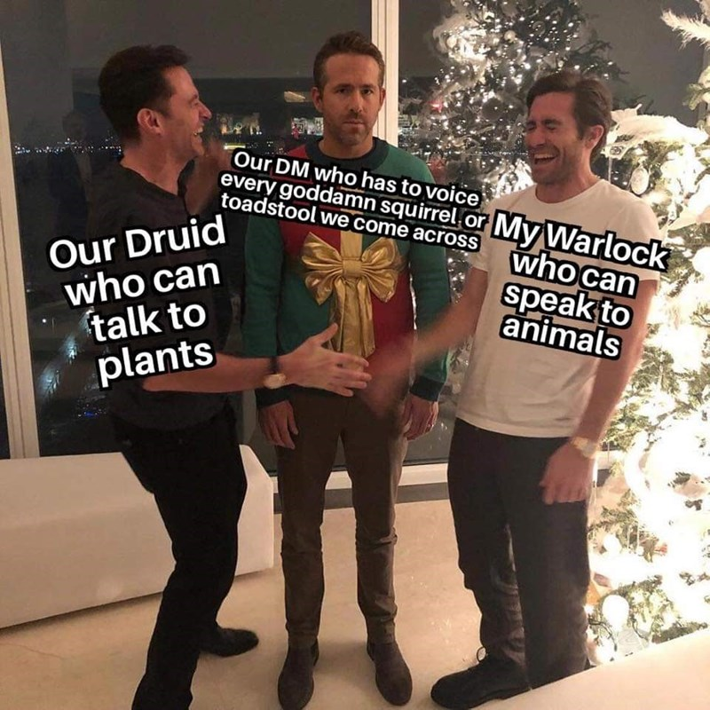 Font - Our DM who has to voice every goddamn squirrel or My Warlock toadstool we come across who can Our Druid who can talk to plants speak to animals