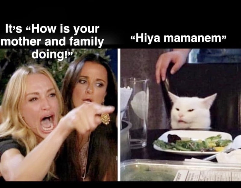 "Cat - It's How is your mother and family doing ""Hiya mamanem"""