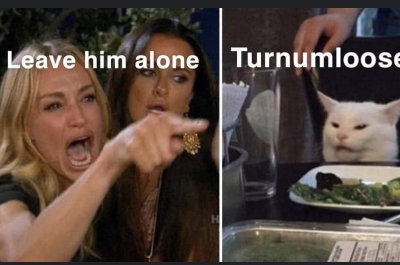 Photo caption - Leave him alone Turnumloose H