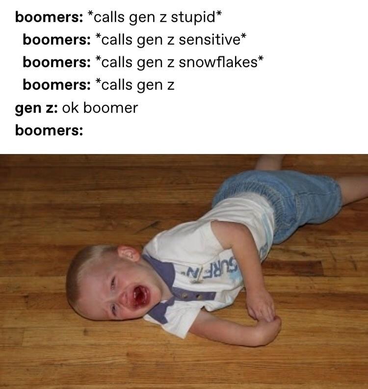 Text - boomers: *calls gen z stupid* boomers: *calls gen z sensitive boomers: *calls gen z snowflakes* boomers: *calls gen z gen z: ok boomer boomers: GURFIAN