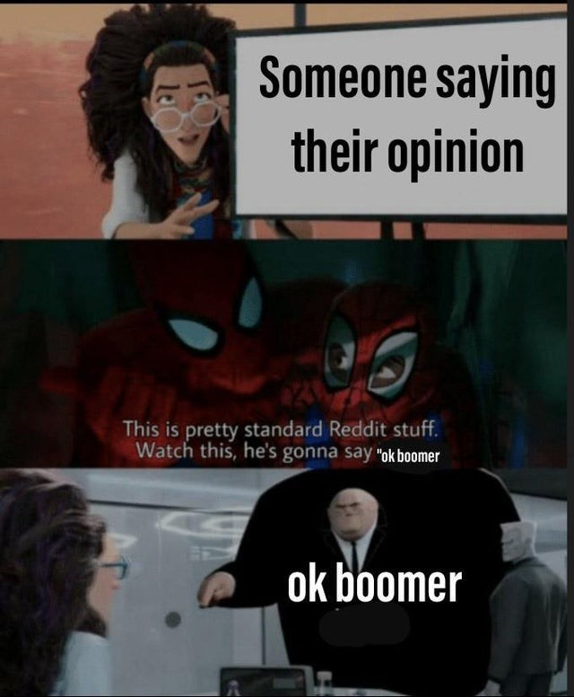 "Text - Someone saying their opinion This is pretty standard Reddit stuff Watch this, he's gonna say ""ok boomer ok boomer le"