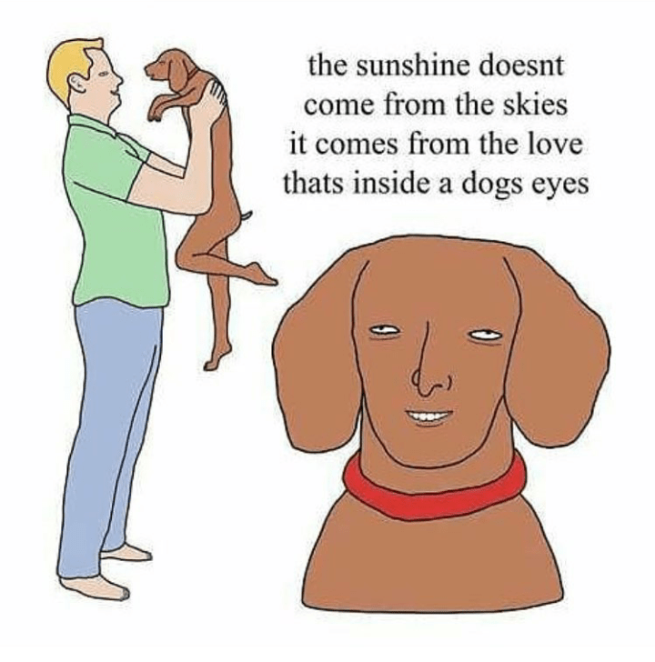 Cartoon - the sunshine doesnt come from the skies it comes from the love thats inside a dogs eyes
