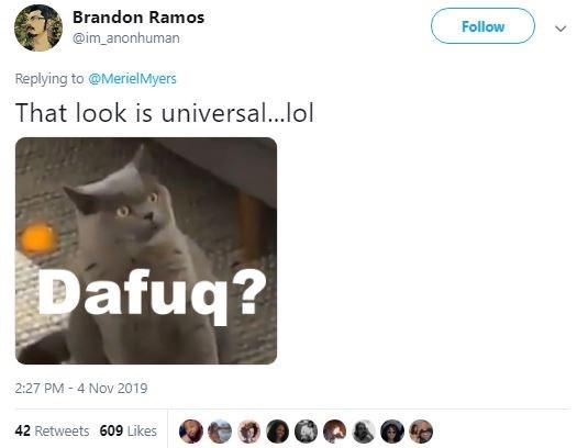 Text - Brandon Ramos Follow @im anonhuman Replying to @MerielMyers That look is universal...lol Dafuq? 2:27 PM -4 Nov 2019 42 Retweets 609 Likes