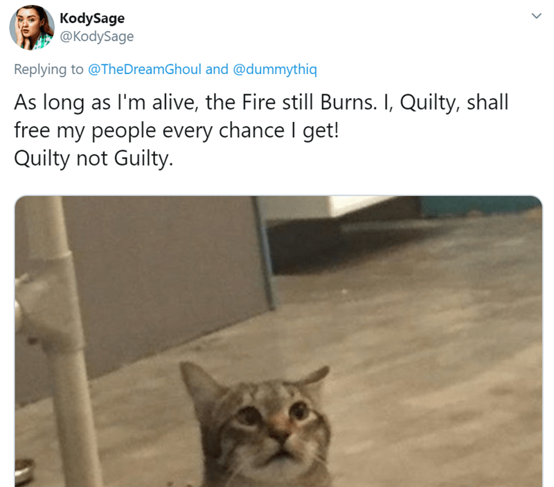 Cat - KodySage @KodySage Replying to @The DreamGhoul and @dummythiq As long as I'm alive, the Fire still Burns. I, Quilty, shall free my people every chance I get! Quilty not Guilty.