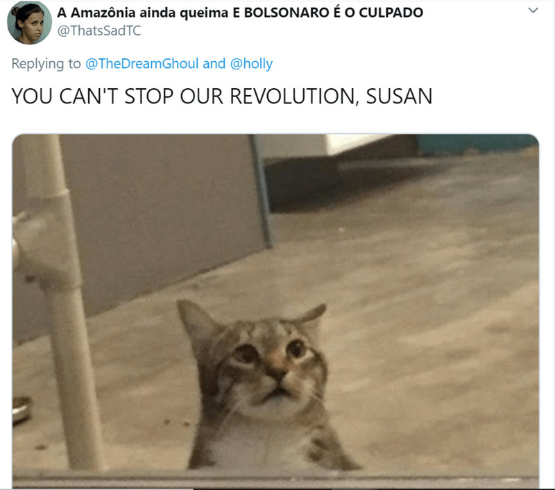 Cat - A Amazônia ainda queima E BOLSONARO É O CULPADO @ThatsSadTC Replying to @TheDreamGhoul and @holly YOU CAN'T STOP OUR REVOLUTION, SUSAN