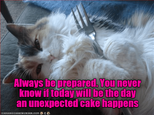 Cat - Always be prepared You never know if today will be the day an unexpected cake happens ICANHASCHEE2EURGER cOM