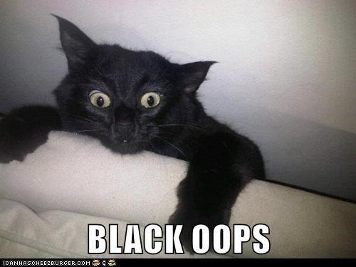 Cat - BLACK OOPS CANHASCHEE2EURGER cOM
