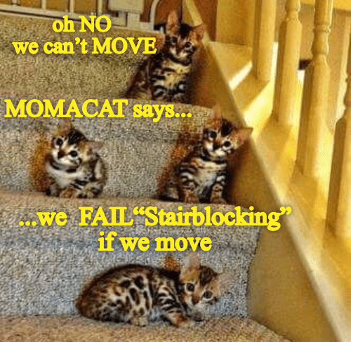 Cat - סאהס: we can't MOVE MOMACAT says.. we FAIL Stairblocking if we move