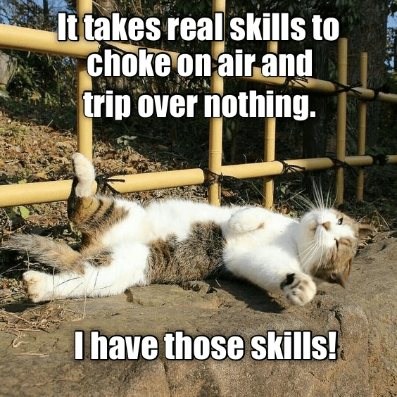 Cat - It takes real skills to choke on air and trip over nothing I have those skills!