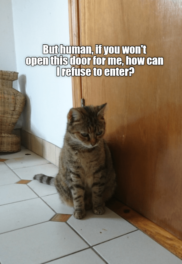 Cat - Buthuman, if you won't open this door for me, how can Orefuse to enter?
