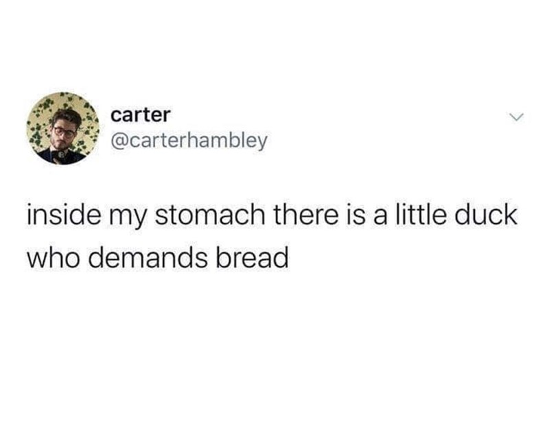 Text - carter @carterhambley inside my stomach there is a little duck who demands bread