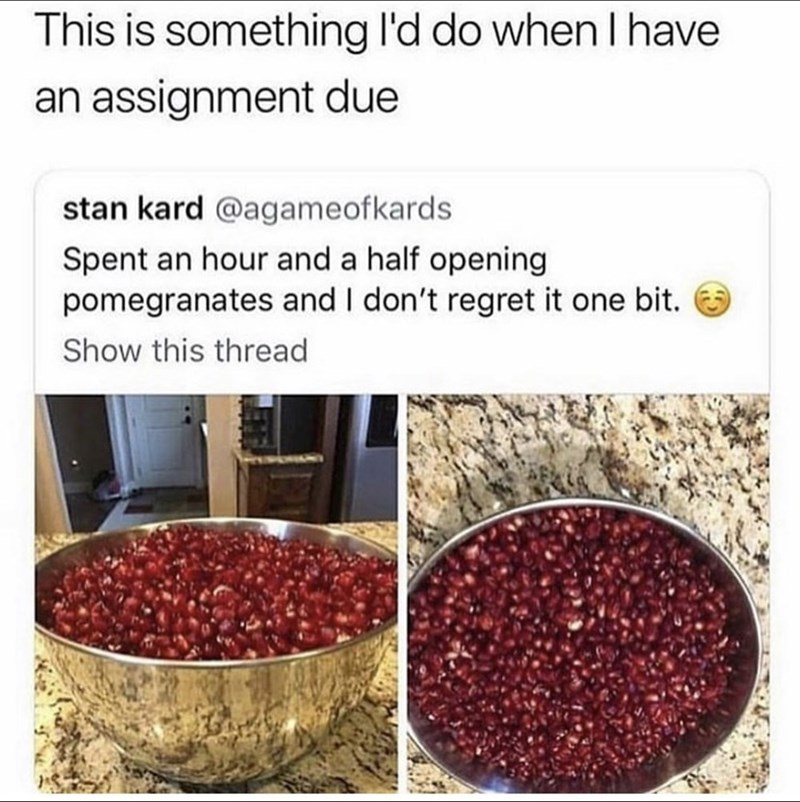 Superfood - This is something l'd do when I have an assignment due stan kard @agameofkards Spent an hour and a half opening pomegranates and I don't regret it one bit. Show this thread