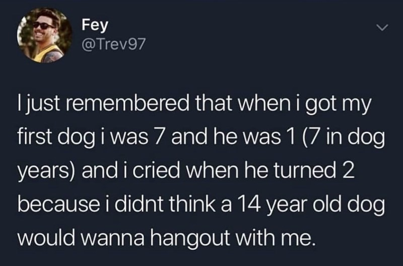 Text - Fey @Trev97 ljust remembered that when i got my first dog i was 7 and he was 1 (7 in dog years) and i cried when he turned 2 because i didnt think a 14 year old dog would wanna hangout with me.