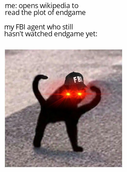 Black cat - me: opens wikipedia to read the plot of endgame my FBI agent who still hasn't watched endgame yet: FB