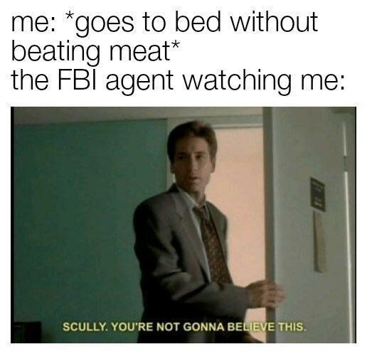 Text - me: *goes to bed without beating meat* the FBl agent watching me: SCULLY. YOU'RE NOT GONNA BELIEVE THIS.