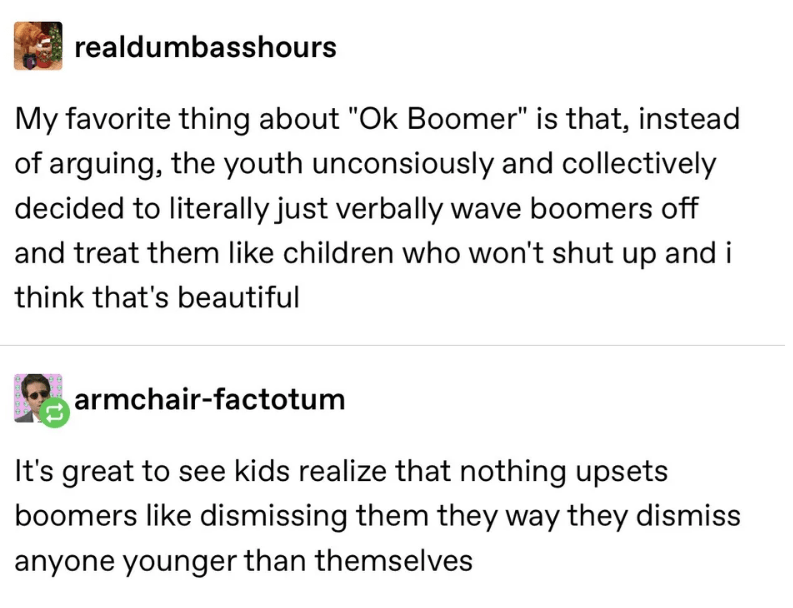 """Text - realdumbasshours My favorite thing about """"Ok Boomer"""" is that, instead of arguing, the youth unconsiously and collectively decided to literally just verbally wave boomers off and treat them like children who won't shut up and i think that's beautiful armchair-factotum It's great to see kids realize that nothing upsets boomers like dismissing them they way they dismiss anyone younger than themselves"""