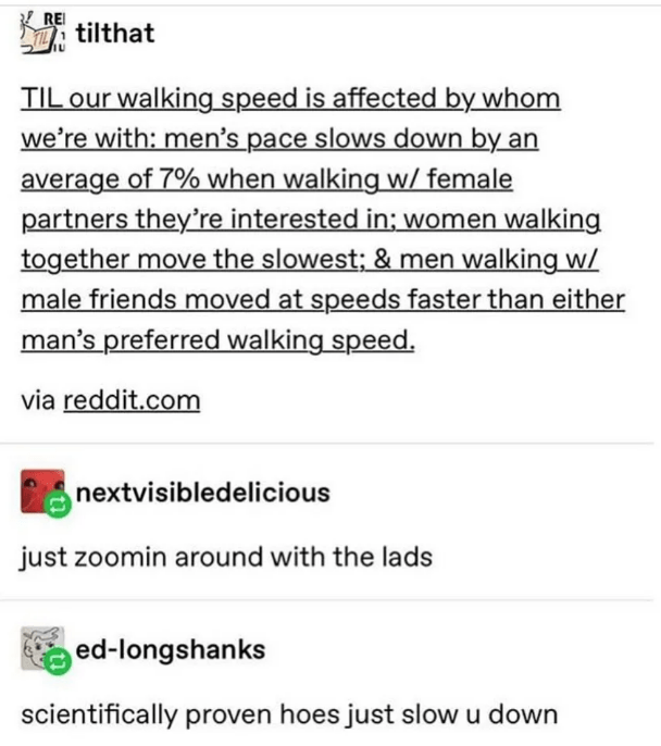 Text - RE YILtilthat TIL our walking speed is affected by whom we're with: men's pace slows down by an average of 7% when walking w/ female partners they're interested in: women walking together move the slowest; & men walking w/ male friends moved at speeds faster than either man's preferred walking speed via reddit.com nextvisibledelicious just zoomin around with the lads ed-longshanks scientifically proven hoes just slow u down