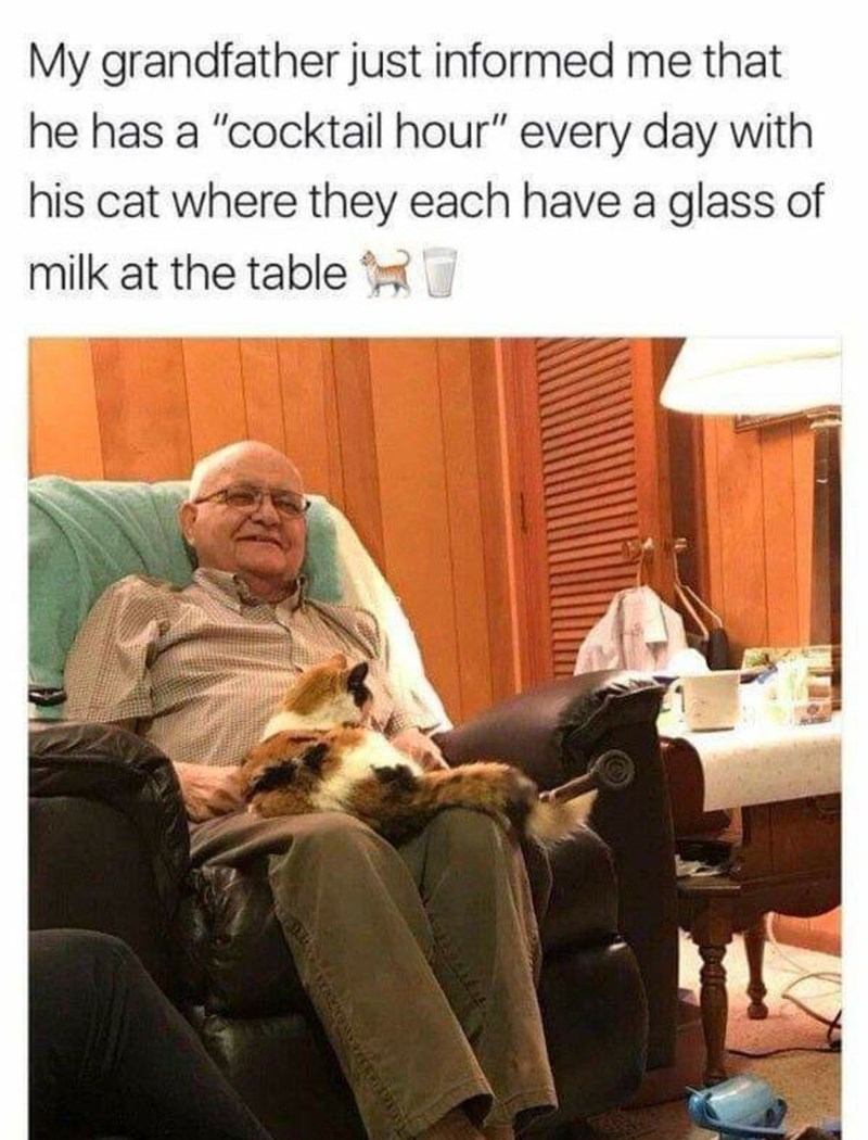 """Adaptation - My grandfather just informed me that he has a """"cocktail hour"""" every day with his cat where they each have a glass of milk at the tableH"""