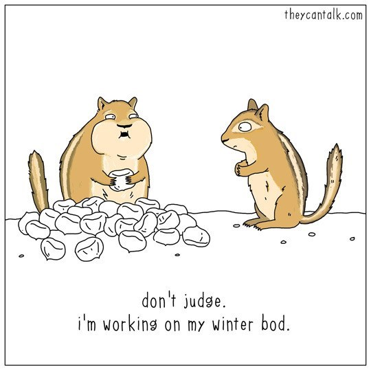 Cartoon - theycantalk.com don't judse. i'm working on my winter bod. 0