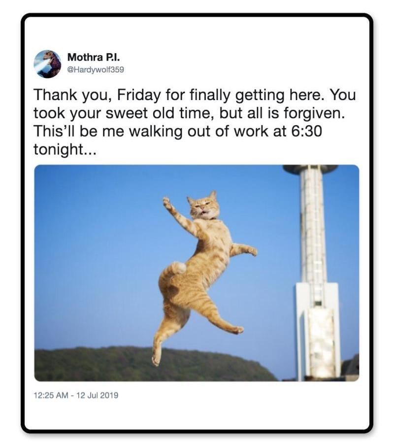 Technology - Mothra P.I. @Hardywolf359 Thank you, Friday for finally getting here. You took your sweet old time, but all is forgiven. This'll be me walking out of work at 6:30 tonight... 12:25 AM-12 Jul 2019