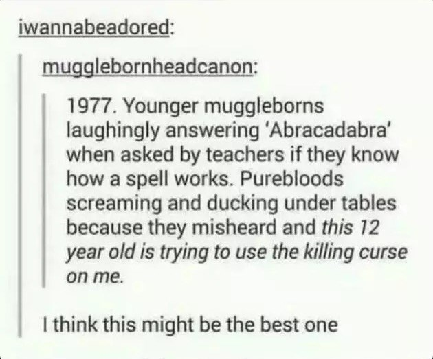 Text - iwannabeadored: mugglebornheadcanon: 1977. Younger muggleborns laughingly answering 'Abracadabra when asked by teachers if they know how a spell works. Purebloods screaming and ducking under tables because they misheard and this 12 year old is trying to use the killing curse on me. I think this might be the best one