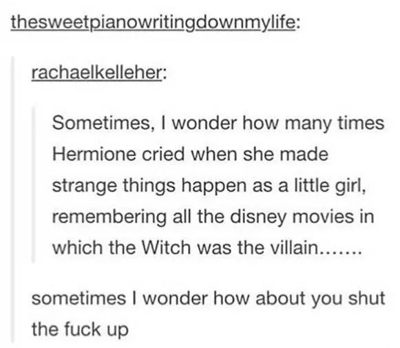 Text - thesweetpianowritingdownmylife: rachaelkelleher: Sometimes, I wonder how many times Hermione cried when she made strange things happen as a little girl, remembering all the disney movies in which the Witch was the villain... sometimes I wonder how about you shut the fuck up