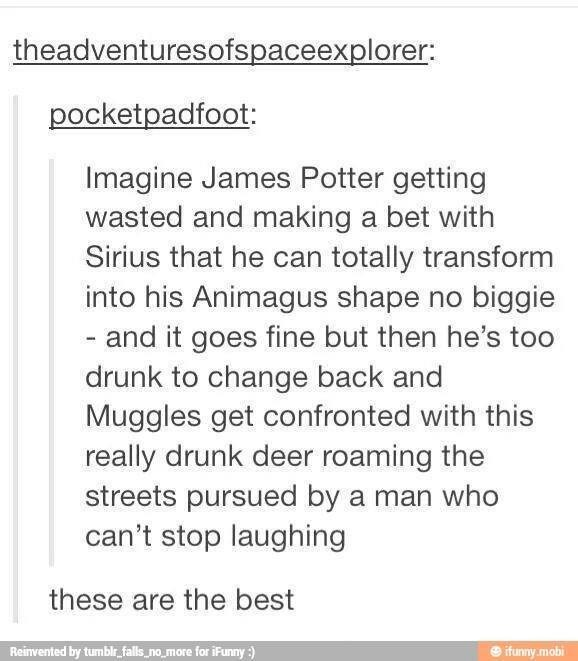 Text - theadventuresofspaceexplorer: pocketpadfoot: Imagine James Potter getting wasted and making a bet with Sirius that he can totally transform into his Animagus shape no biggie - and it goes fine but then he's too drunk to change back and Muggles get confronted with this really drunk deer roaming the streets pursued by a man who can't stop laughing these are the best Reinvented by tumblr falls,no more for iFunny:) ifunny.mobi