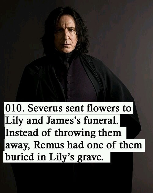 Text - 010. Severus sent flowers to Lily and James's funeral. Instead of throwing them away, Remus had one of them buried in Lily's grave.