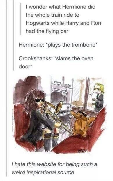 """Text - I wonder what Hermione did the whole train ride to Hogwarts while Harry and Ron had the flying car Hermione: """"plays the trombone Crookshanks: """"slams the oven door I hate this website for being such a weird inspirational source"""
