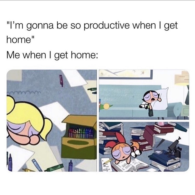 """Cartoon - """"I'm gonna be so productive when I get home"""" Me when I get home:"""