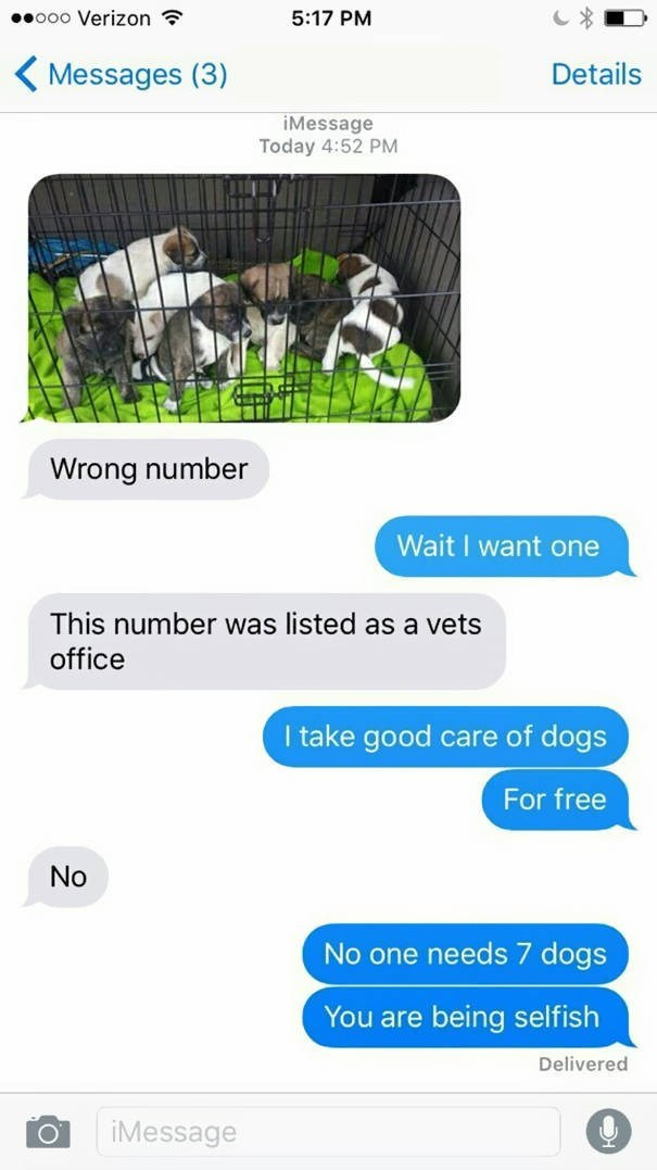 Font - ooo Verizon 5:17 PM Messages (3) Details iMessage Today 4:52 PM Wrong number Wait I want one This number was listed as a vets office I take good care of dogs For free No one needs 7 dogs You are being selfish Delivered iMessage O No
