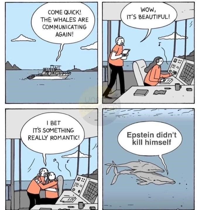Cartoon - woW, IT'S BEAUTIFUL! COME QUICK! THE WHALES ARE COMMUNICATING AGAIN! I BET IT'S SOMETHING REALLY ROMANTIC! Epstein didn't kill himself