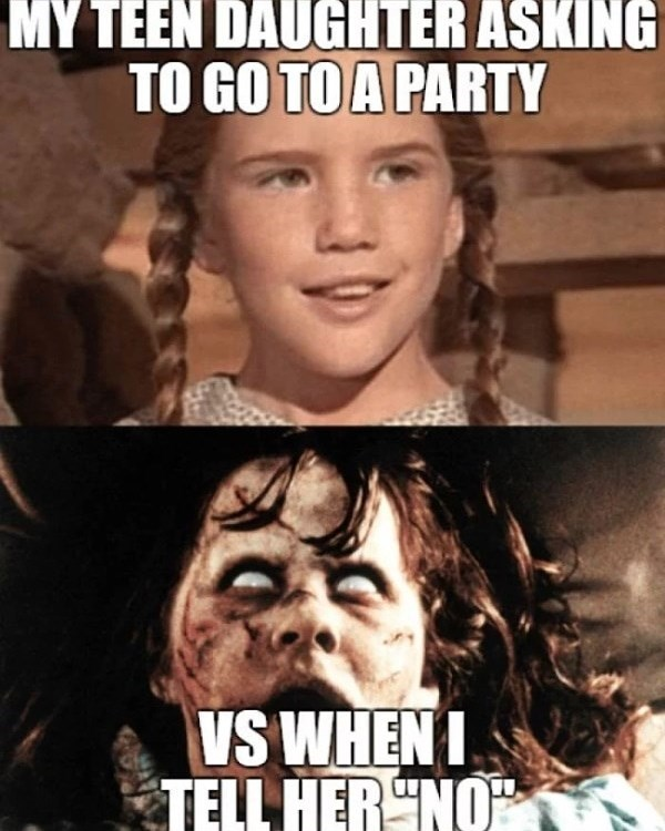Internet meme - MY TEEN DAUGHTER ASKING TO GO TO A PARTY VS WHENI TELL HER NO