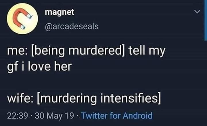 Text - magnet @arcadeseals me: [being murdered] tell my gf i love her wife: [murdering intensifies] 22:39 30 May 19 Twitter for Android