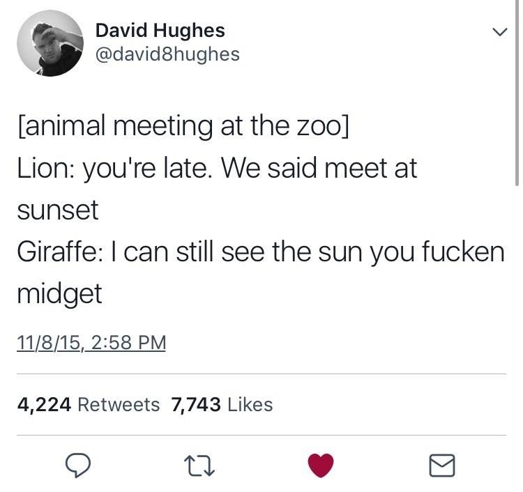 Text - David Hughes @david8hughes [animal meeting at the zoo] Lion: you're late. We said meet at sunset Giraffe: I can still see the sun you fucken midget 11/8/15, 2:58 PM 4,224 Retweets 7,743 Likes