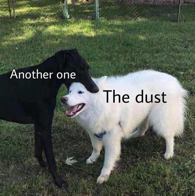 Dog - Another one The dust