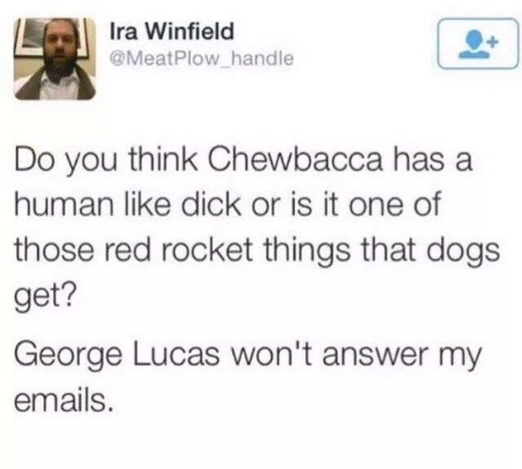 Text - Ira Winfield @MeatPlow handle Do you think Chewbacca has a human like dick or is it one of those red rocket things that dogs get? George Lucas won't answer my emails.
