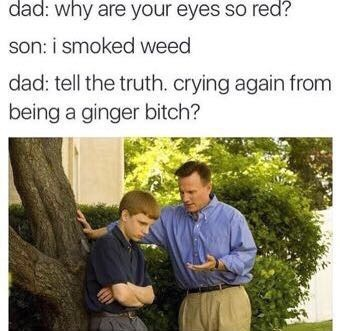 Text - dad: why are your eyes so red? son: i smoked weed dad: tell the truth. crying again from being a ginger bitch?