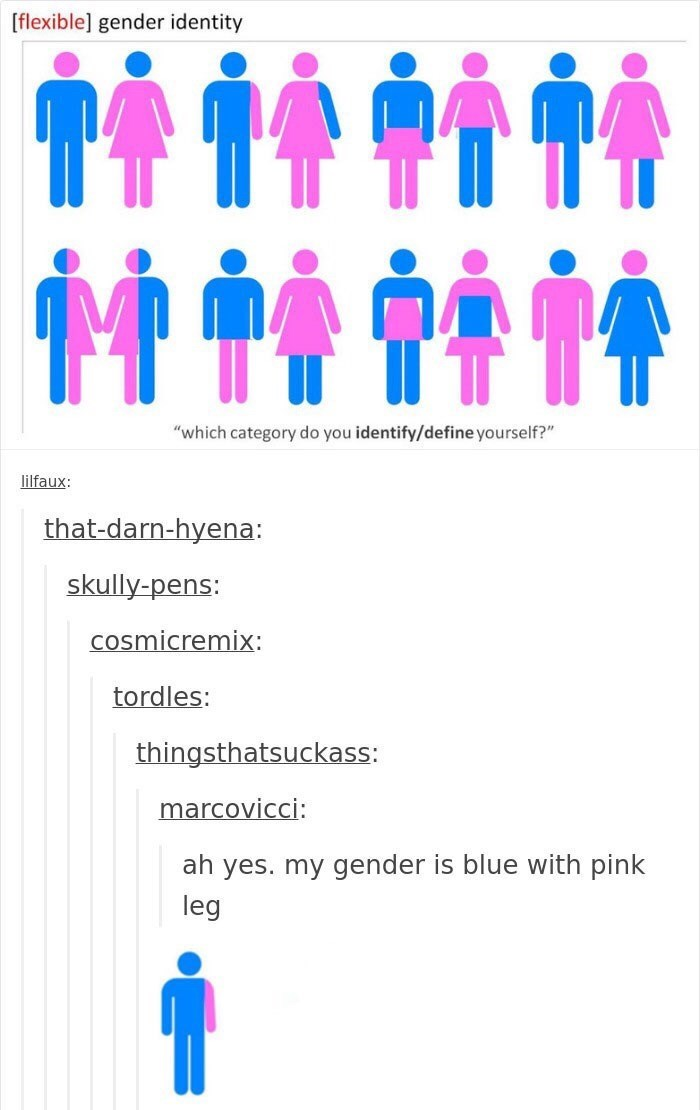 """Text - [flexible] gender identity """"which category do you identify/define yourself?"""" lilfaux: that-darn-hyena: skully-pens: cosmicremix: tordles: thingsthatsuckass: marcovicci: ah yes. my gender is blue with pink leg"""