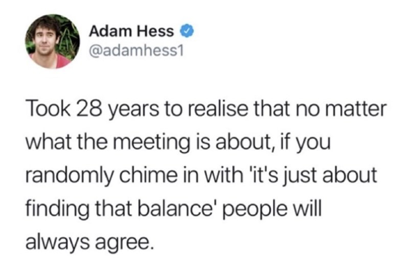 Text - Adam Hess @adamhess1 Took 28 years to realise that no matter what the meeting is about, if you randomly chime in with it's just about finding that balance' people will always agree.