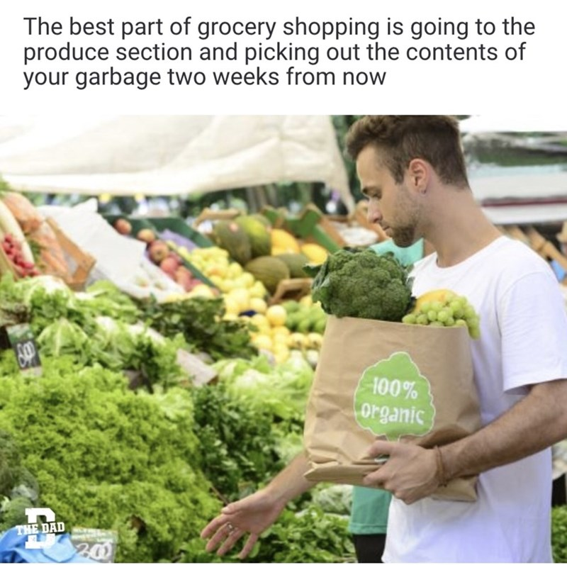 Natural foods - The best part of grocery shopping is going to the produce section and picking out the contents of your garbage two weeks from now 100% organic THE DAD 20