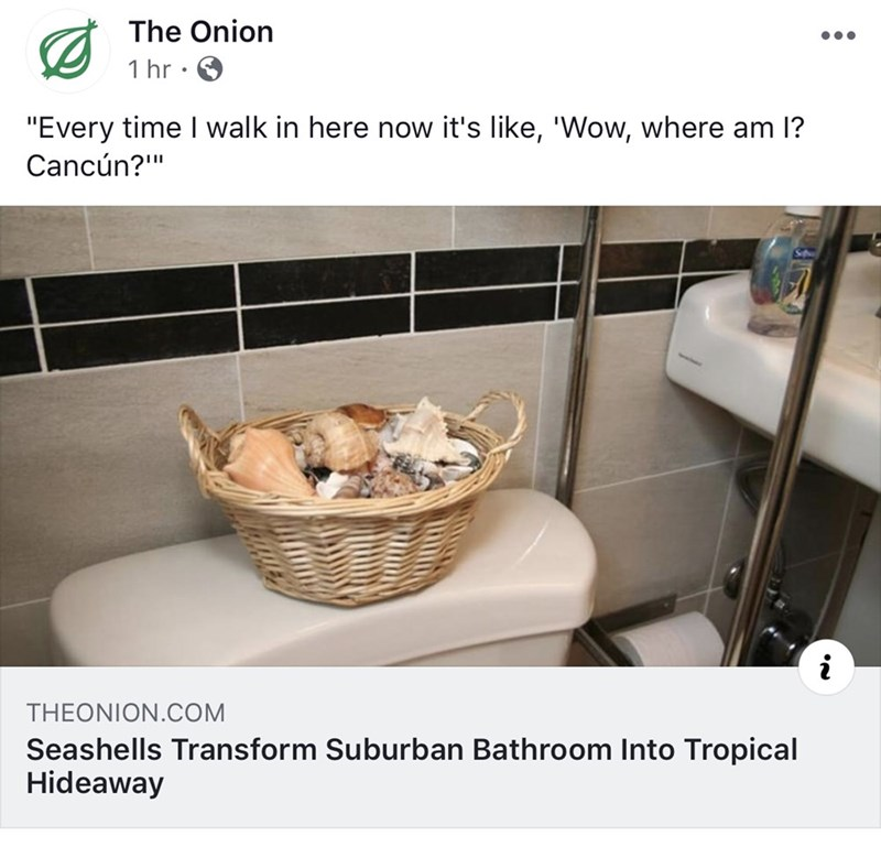 """Product - The Onion 1 hr """"Every time I walk in here now it's like, """"Wow, where am I? Cancúun?"""" THEONION.COM Seashells Transform Suburban Bathroom Into Tropical Hideaway"""