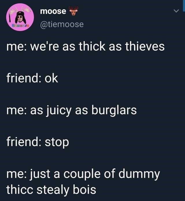 Text - moose @tiemoose caneos me: we're as thick as thieves friend: ok me: as juicy as burglars friend: stop me: just a couple of dummy thicc stealy bois