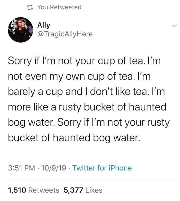 Text - ta You Retweeted Ally @TragicAlly Here Sorry if I'm not your cup of tea. I'm not even my own cup of tea. I'm barely a cup and I don't like tea. I'm more like a rusty bucket of haunted bog water. Sorry if l'm not your rusty bucket of haunted bog water. 3:51 PM 10/9/19 Twitter for iPhone 1,510 Retweets 5,377 Likes